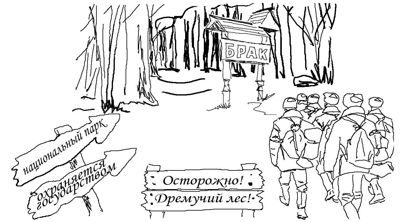 Парад невест. Глава 2.3. Ориентируемся на «местности». Сергей Недоруб.